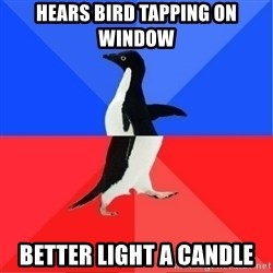 Socially Awkward to Awesome Penguin - Hears bird tapping on wIndow Better light a candle