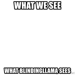 Blank Template - What we see What blindingllama sees