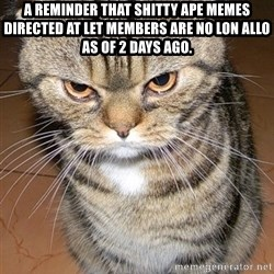 angry cat 2 - A reminder that shitty ape meMEs directed at let members are no lon allo as of 2 days ago.
