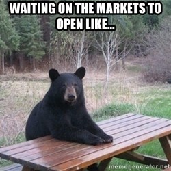 Patient Bear - Waiting on the markets to open like...