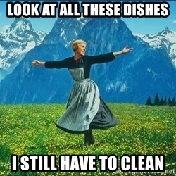 Look at all the things - Look at all These Dishes I still have To CLEan