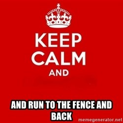 Keep Calm 2 -  AND RUN TO THE FENCE AND BACK