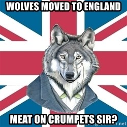 Sir Courage Wolf Esquire - Wolves moved to England Meat on crumpets sir?