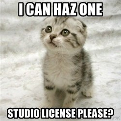 Can haz cat - I can haz one studio license please?