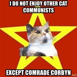 Lenin Cat Red - I do not enjoy other cat communisTs Except comrade corbyn