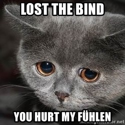 sad cat - LOST THE BIND you hurt my fühlen