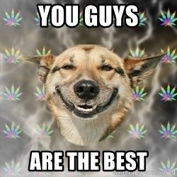 Stoner Dog - You GUYS ARE THE best