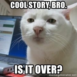 Serious Cat - cool story, bro. is it over?