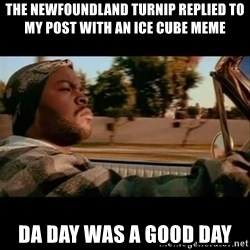Ice Cube- Today was a Good day - The Newfoundland turnip replied to my post with an ice cube meme Da day was a good day