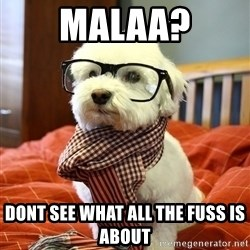 hipster dog - Malaa? Dont see what all the fuss is aBout