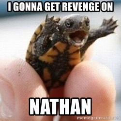 angry turtle - I gonna get revenge on Nathan