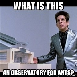 Zoolander for Ants - What is this An observatory for ants?