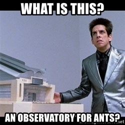 Zoolander for Ants - What is this? An observatory for ants?