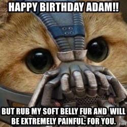 bane cat - Happy Birthday Adam!! But rub my soft belly fur and  will be extremely painful; for you.