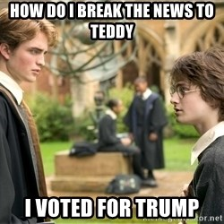 Harry Potter  - How do I break the news to  Teddy I voted for Trump
