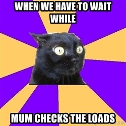 Anxiety Cat - WhEn we have to wait while Mum checks The loads