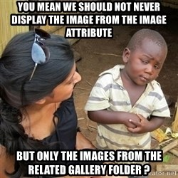 you mean to tell me black kid - You mean we should not never display the image from the image attribute  but only the images from the related gallery folder ?