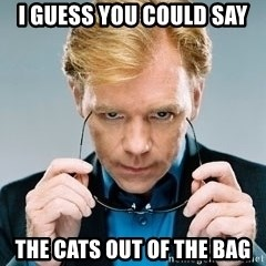 David Caruso CSI - I guess you could say The cats out of the bag