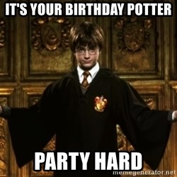 Harry Potter Come At Me Bro - It's your Birthday Potter Party Hard