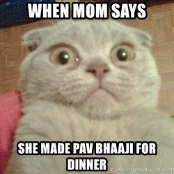 GEEZUS cat - When mOm says She made pav bhaaji for dinner