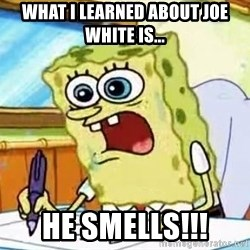 Spongebob What I Learned In Boating School Is - what i learned about joe white is... he smells!!!