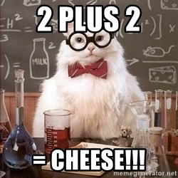 Science Cat - 2 plus 2  = cheese!!!