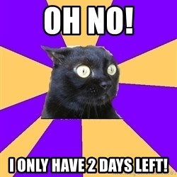 Anxiety Cat - OH NO! I ONLY HAVE 2 days left!
