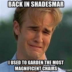 90s Problems - back in shadesmar i used to garden the most magnificent chairs