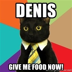 Business Cat - DENIS     GIVE ME FOOD NOW!
