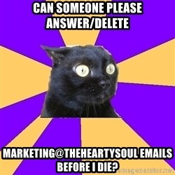 Anxiety Cat - can someone please answer/delete marketing@theheartysoul emails before i die?