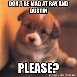 cute puppy - don't be mad at Ray and Dustin please?