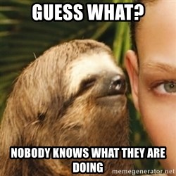 Whispering sloth - Guess what? Nobody knows what they are doing