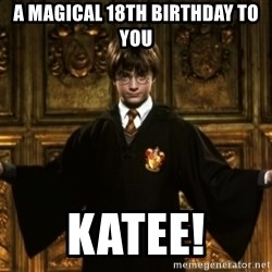 Harry Potter Come At Me Bro - a magical 18th birthday to you katee!