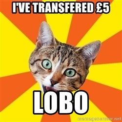 Bad Advice Cat - I've transfeRed £5 Lobo