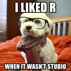 hipster dog - i liked r when it wasn't studio