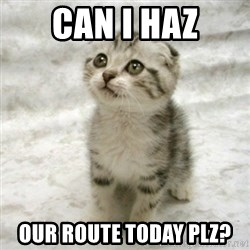 Can haz cat - Can i haz Our route today plz?