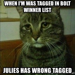 Depressed cat 2 - When i'm was tagged in bolt winner list Julies has wrong tagged