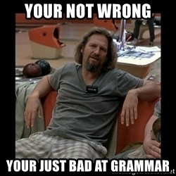 The Dude - Your not wrong Your just bad at grammar
