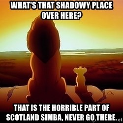simba mufasa - What's That Shadowy Place Over Here?  That Is The Horrible Part Of Scotland Simba, Never Go There.