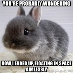ADHD Bunny - You're probably wondering how I ended up floating in space aimlessly