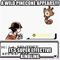 a wild pokemon appeared - A wild pinecone appears!!! It's super effective kindling