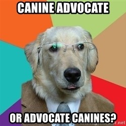 Business Dog - Canine Advocate Or advocate canines?