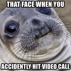 Awkward Moment Seal - That Face When You  Accidently Hit Video Call
