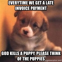 cute puppy - Everytime we get a late invoice payment God Kills a puppy. Please think of the puppies