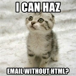 Can haz cat - i can haz email without html?