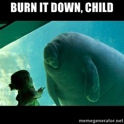 Overlord Manatee - burn it down, child