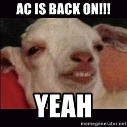 10 goat - AC is back on!!! Yeah
