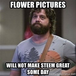 Alan Hangover - flower pictures will not make steem great some day