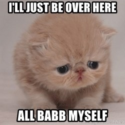 Super Sad Cat - I'll just be over here All babb myself