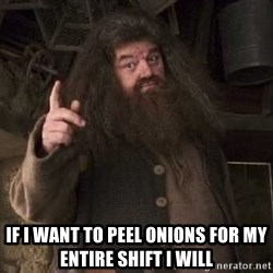 Hagrid -  If i want to pEel onions for my entire shift i will